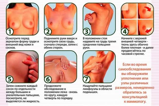 самообследование грудных желез фото
