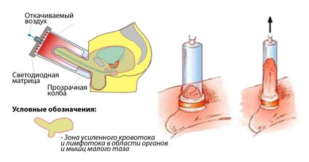 Мази и таблетки для увеличения члена