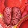 Боли в пояснице причины у мужчин лечение