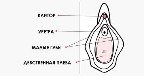 Дефлорационный цистит лечение 35
