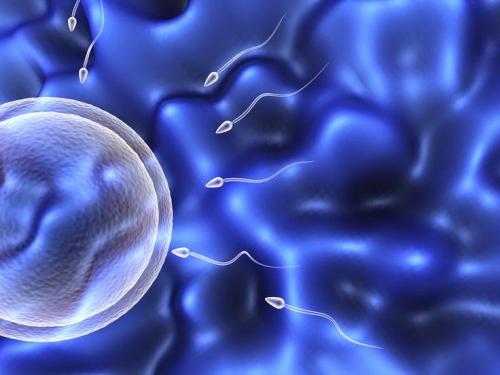 Азооспермия — причины и лечение